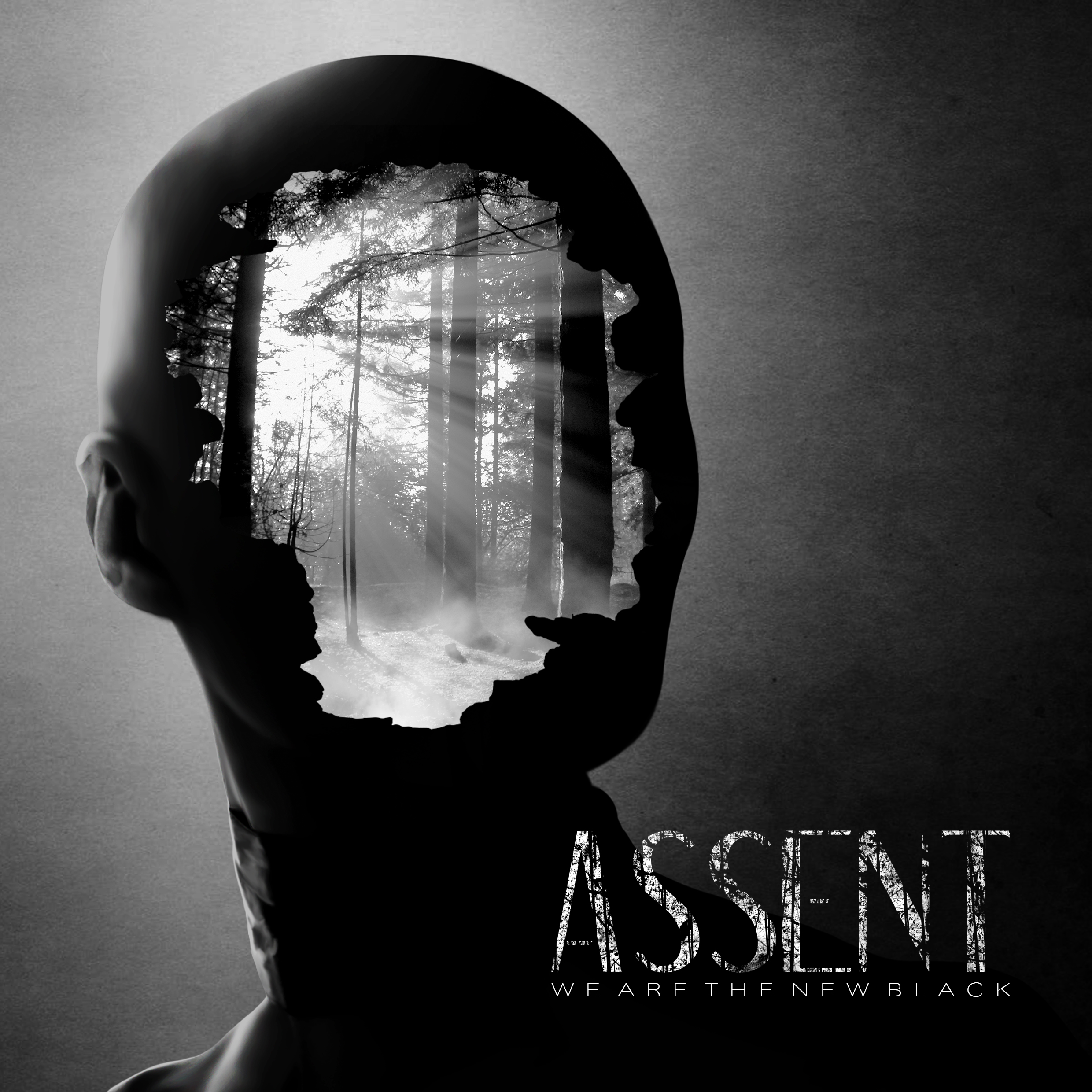 Assent - the band